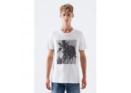Palmiye Baskılı Beyaz Tişört (066068-30701)