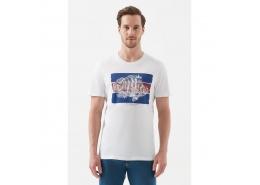 Balık Baskılı Erkek Beyaz Tişört (066097-620)