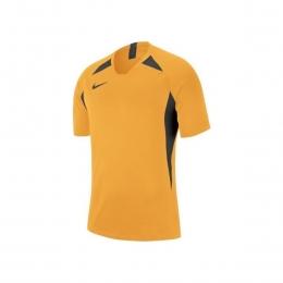 Dri-Fit Legend Erkek Sarı Futbol Forma (AJ0998-739)