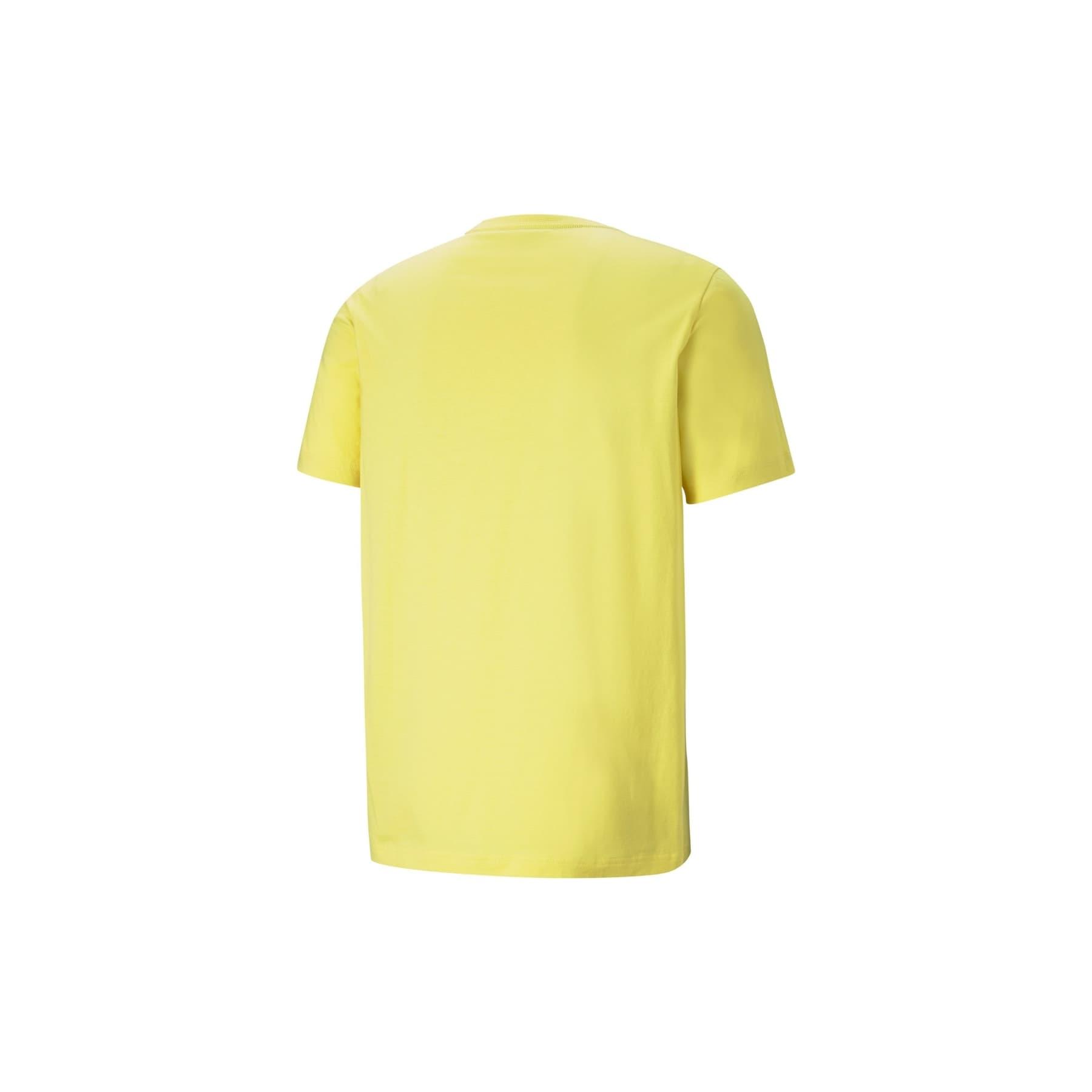Essentials Logo Erkek Sarı Tişört (586667-38)