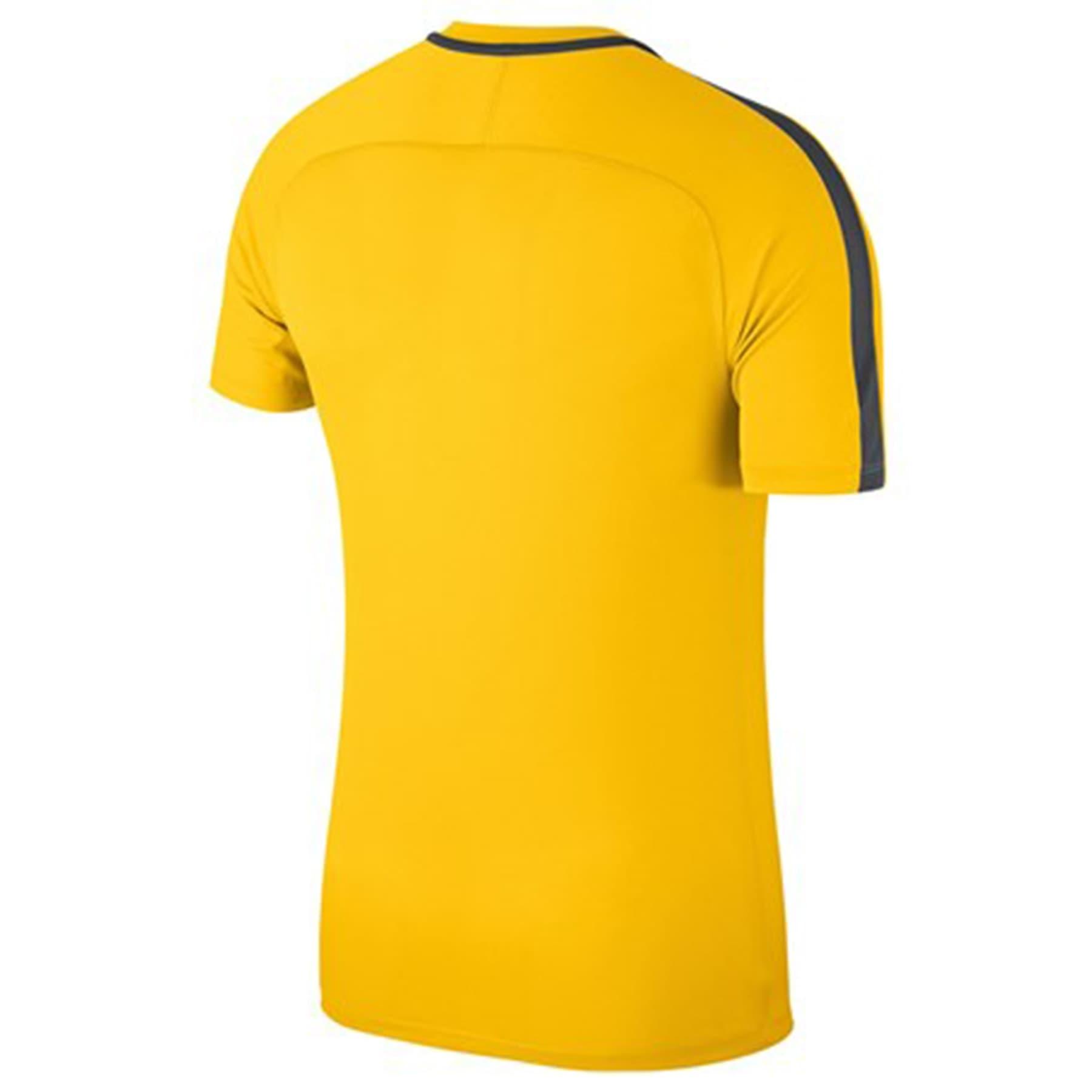 Dry Academy 18 Erkek Sarı Spor Tişört (893693-719)